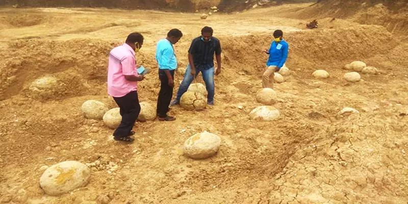 Tamilnadu Dinosaur Egg